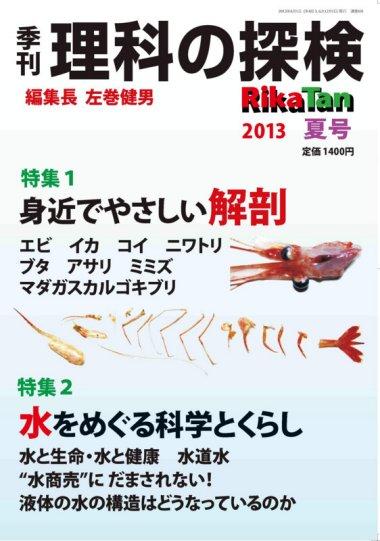 Rikatan2013summer