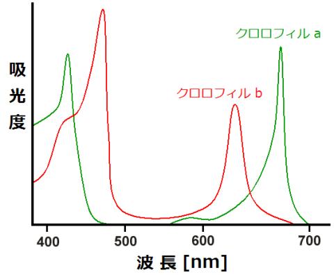 クロロフィルの吸収スペクトル
