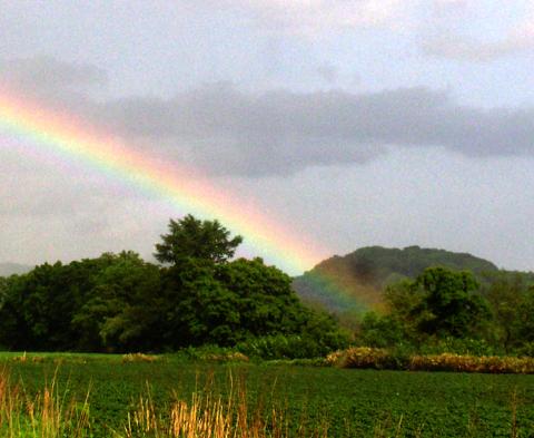 虹の色にマゼンタは存在しない