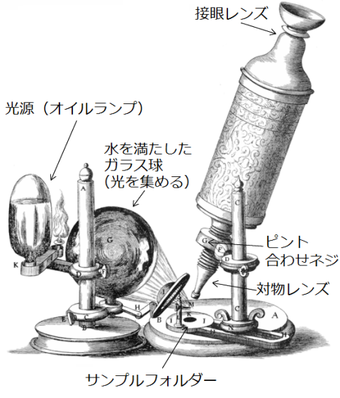 Roberthookmicroscope1